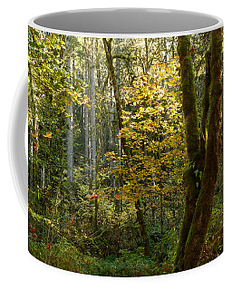 Light In The Forest Coffee Mug