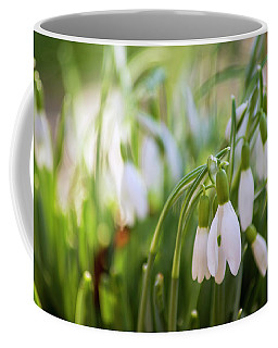 Coffee Mug featuring the photograph Light Is On Its Way by Rima Biswas