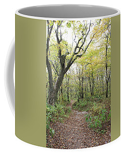 Light On Path Coffee Mug