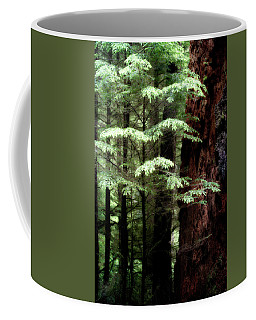 Light On Trees Coffee Mug
