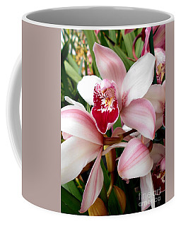 Light Pink Cymbidium Orchid Coffee Mug
