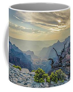 Coffee Mug featuring the photograph Light Seeks The Depths Of Grand Canyon by Gaelyn Olmsted
