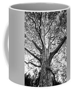 Light, Shadows And Texture Coffee Mug by Karen Stahlros