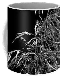 Coffee Mug featuring the photograph Light Shadows by Eric Christopher Jackson