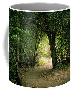 Coffee Mug featuring the photograph Light Through The Tree Tunnel by Alison Frank