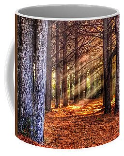 Coffee Mug featuring the photograph Light Thru The Trees by Sumoflam Photography