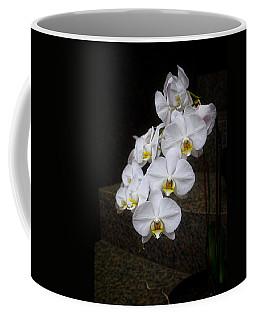 Like A Dove Coffee Mug