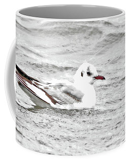 Lil Black-headed Gull Coffee Mug