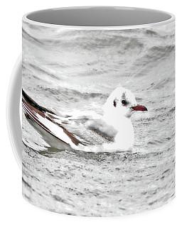 Lil Black-headed Gull Coffee Mug