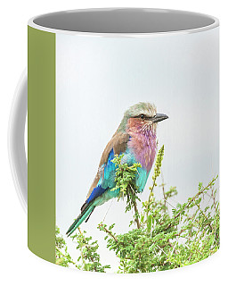 Lilac Breasted Roller. Coffee Mug
