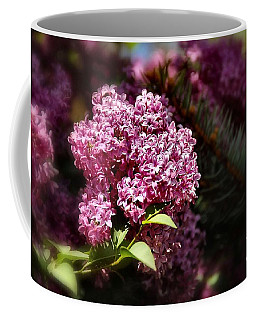 Lilacs And Spruce  Tree Coffee Mug by Elaine Manley