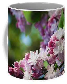 Lilacs Of Spring Coffee Mug