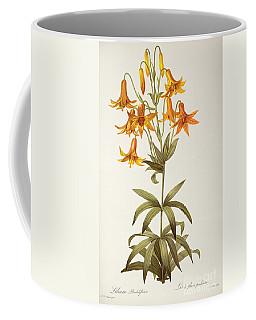Lilium Penduliflorum Coffee Mug