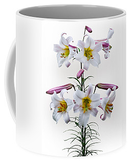 Lilium Regale Coffee Mug