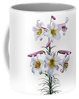 Lilium Regale Coffee Mug by Jane McIlroy