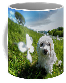 Coffee Mug featuring the photograph Lilli At The Daffodils Blossimg At Cavalla Plains 2017 - Lilli Alla Fioritura Dei Narcisi Al Pian De by Enrico Pelos