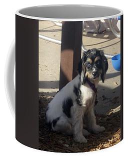 Coffee Mug featuring the photograph Lilo by Amanda Eberly-Kudamik