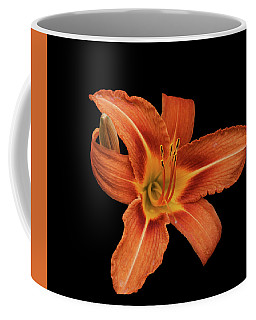Lily In Black Coffee Mug