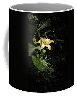 Coffee Mug featuring the photograph Lily In The Garden Of Shadows by Marco Oliveira