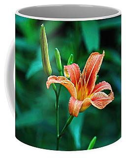 Lily In Woods Coffee Mug