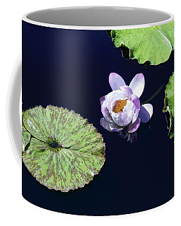 Lily Love II Coffee Mug by Suzanne Gaff