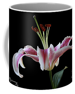 Coffee Mug featuring the photograph Lily by Mariarosa Rockefeller
