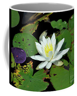 Lily Pad 3 Coffee Mug