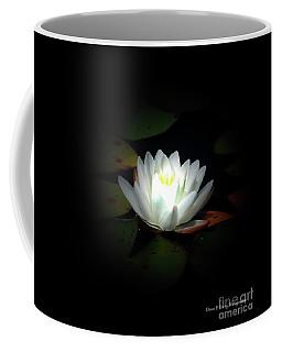 Lily Pad Moonlight Coffee Mug