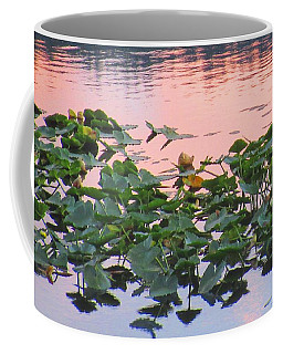 Lily Pads And Pink Water Coffee Mug