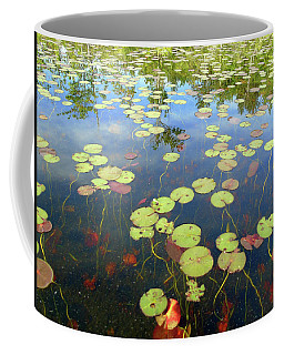 Lily Pads And Reflections Coffee Mug by Susan Lafleur