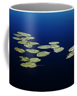 Coffee Mug featuring the photograph Lily Pads Floating On River by Debbie Oppermann