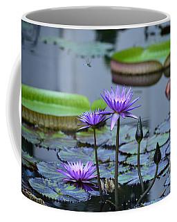 Lily Pond Wonders Coffee Mug