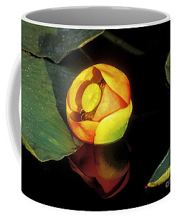 Coffee Mug featuring the photograph Lily Reflection by Sandra Bronstein