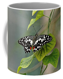 Lime/chequered Swallowtail Butterfly Coffee Mug