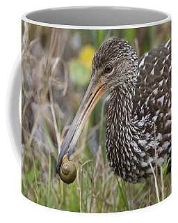Limpkin, Aramus Guarauna Coffee Mug
