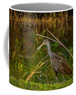 Limpkin At Water's Edge Coffee Mug by Tom Claud