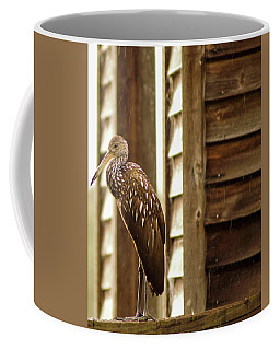 Limpkin Coffee Mug