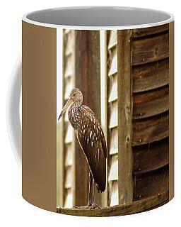 Limpkin Coffee Mug