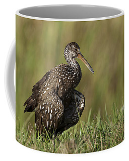 Limpkin Stretching In The Grass Coffee Mug