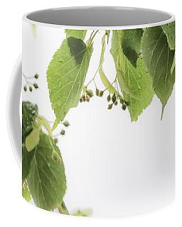 Linden In The Rain 2 -  Coffee Mug