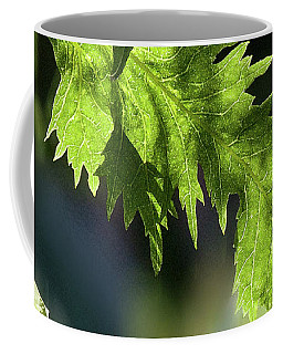 Linden Leaf - Coffee Mug