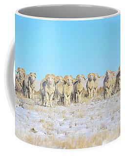 Line Em Up Rams Coffee Mug