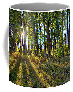 Coffee Mug featuring the photograph Lines by Mary Hone