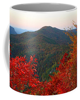 Coffee Mug featuring the photograph Linville Gorge by Kathryn Meyer
