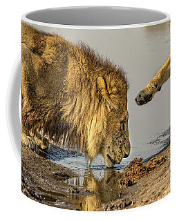Lion Affection Coffee Mug