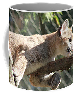 Coffee Mug featuring the photograph Lion Around by Laddie Halupa