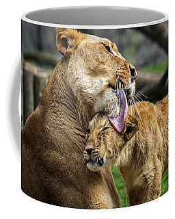 Lion Mother Licking Her Cub Coffee Mug