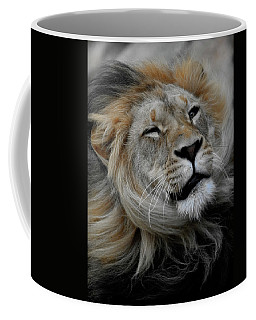 Lions Mane Coffee Mug by Steve McKinzie