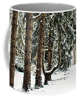 Coffee Mug featuring the photograph Listen To The Quiet by Sandy Moulder