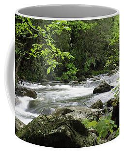 Litltle River 1 Coffee Mug